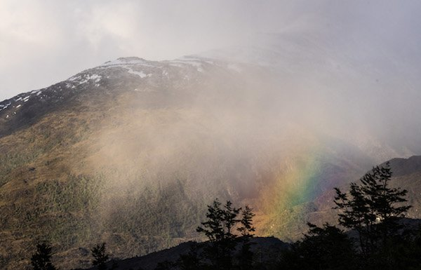 peak in Patagonia shrouded by clouds with rainbow and silhouetted trees